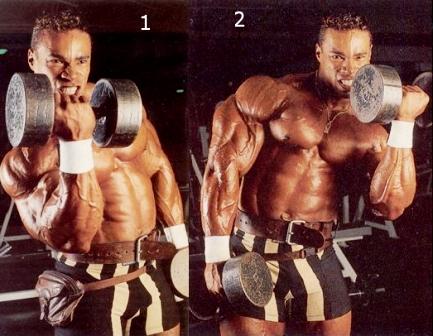 biceps 03.jpg