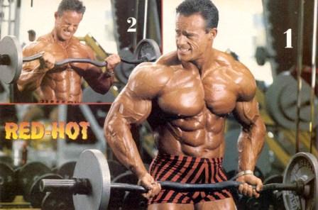 biceps 04.jpg