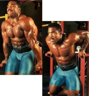 triceps 01.jpg