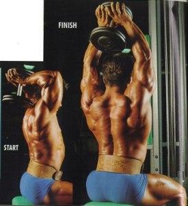 triceps 03.jpg
