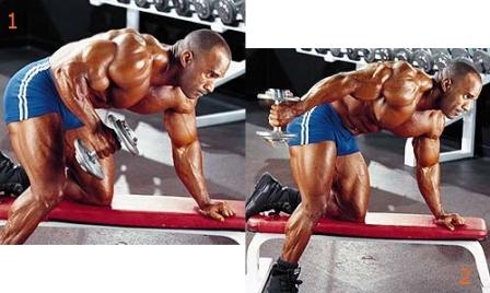 triceps 04.jpg