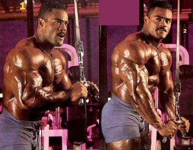 triceps 05.jpg